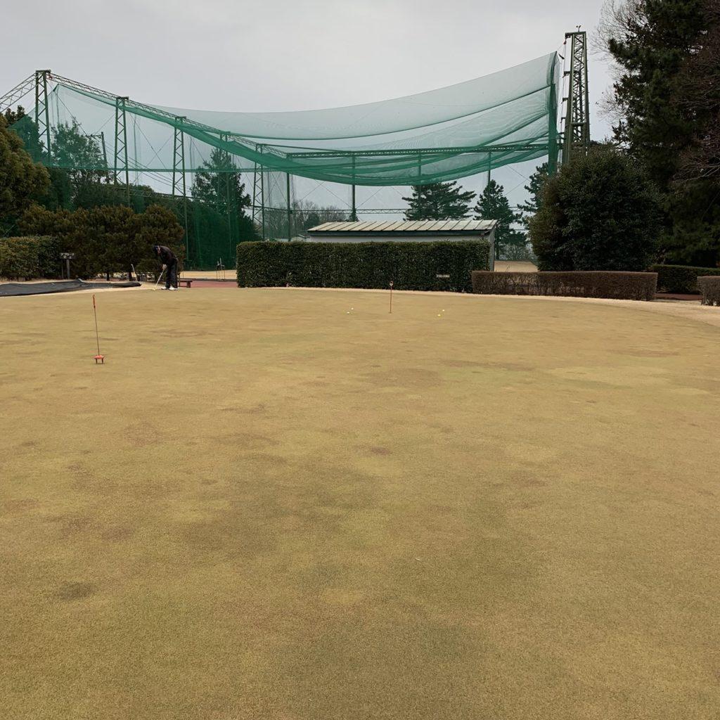 よみうりゴルフ倶楽部 練習グリーン